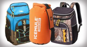 5 Best Backpack Cooler Reviews-Buyer Guide 2019