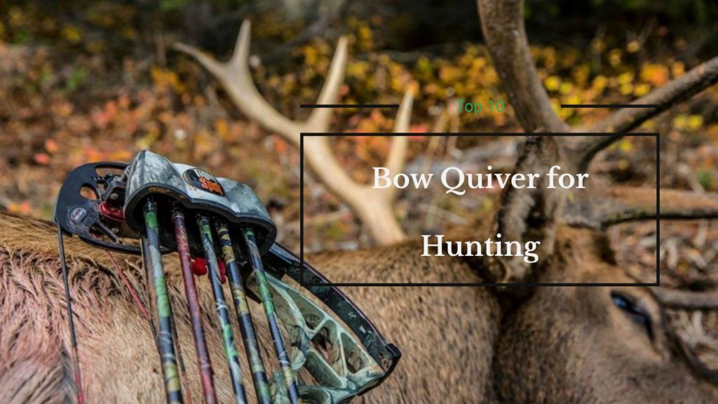 Best Bow Quiver for Hunting