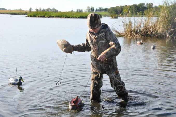 Duck Hunting Tips